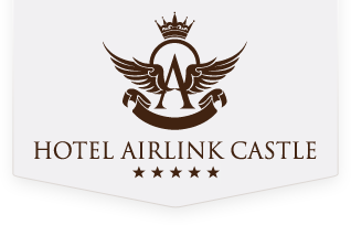 Airlink Castle Logo